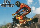 ATV Trial Mania Game