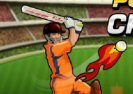 Power T20 Cricket Game
