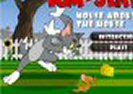 Tom And Jerry Mouse About House Game